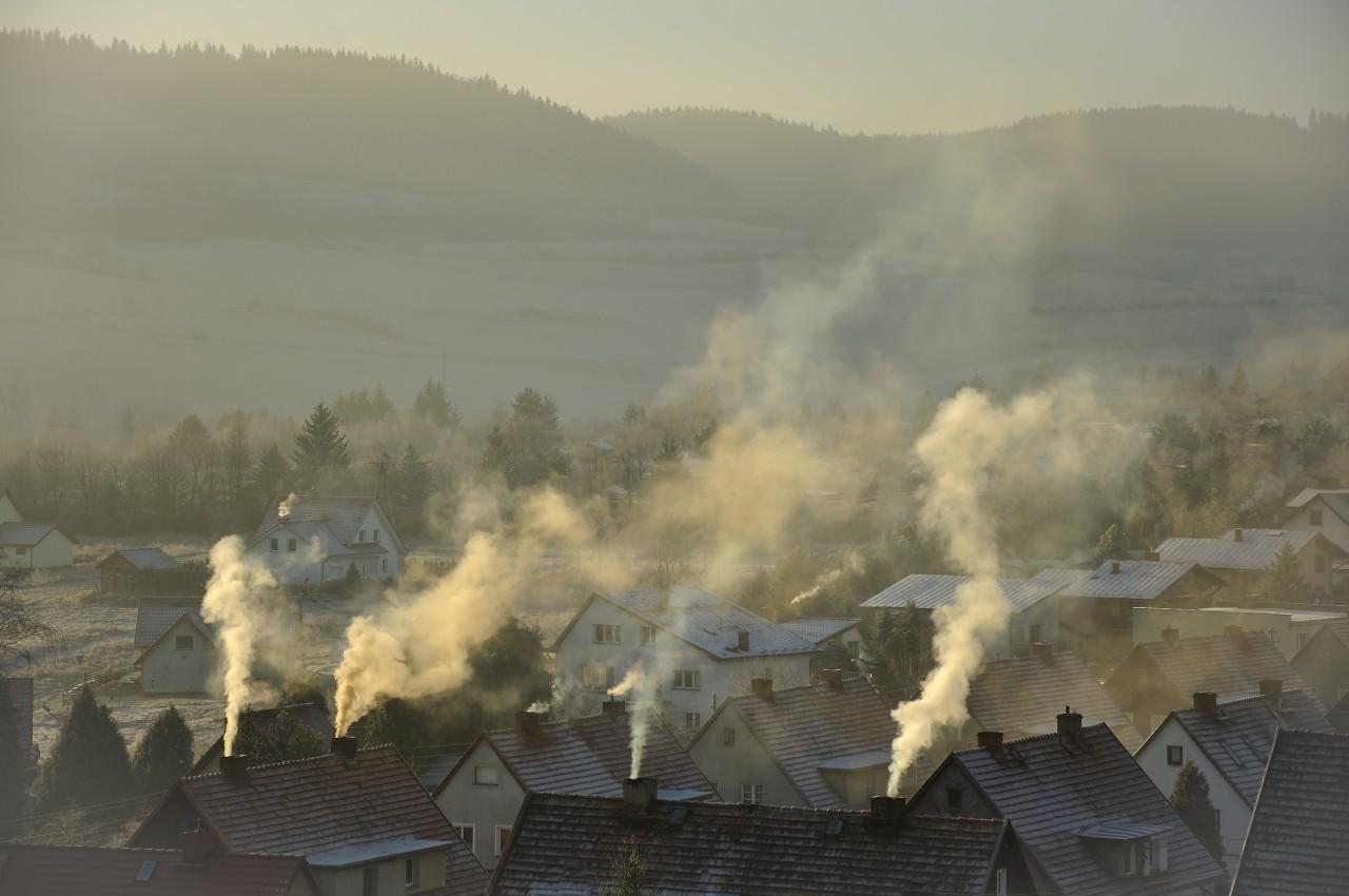 Wpyw-smogu-na-skr