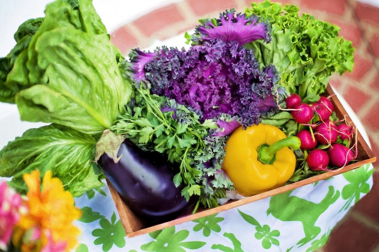 jedzenia-warzyw-sezonowych