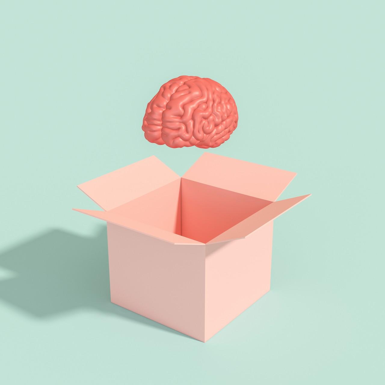 Mózg nie ma płci