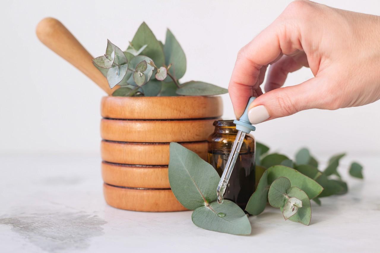 Poytki-z-eukaliptusa